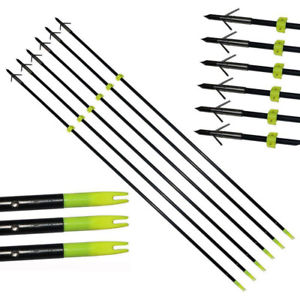 What is the Best Bowfishing Arrow?