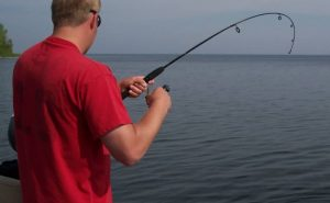 Durability and Sensitivity of Fishing Line