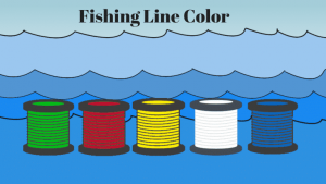 Type of Fishing Line Color