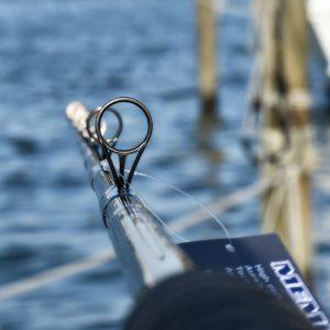 Fishing Line memory