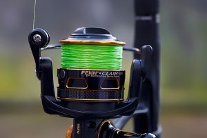 What fishing line to use for trout?
