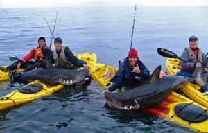 Frequently asked questions about inflatable fishing kayak